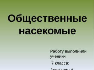 Работу выполнили ученики 7 класса: Аникушин А., Золотова. Д Сербин С., Скороб