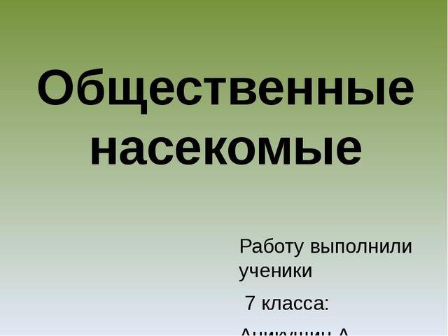 Работу выполнили ученики 7 класса: Аникушин А., Золотова. Д Сербин С., Скороб...