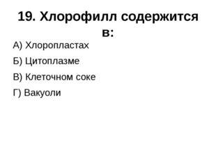 19. Хлорофилл содержится в: А) Хлоропластах  Б) Цитоплазме  В) Клеточно