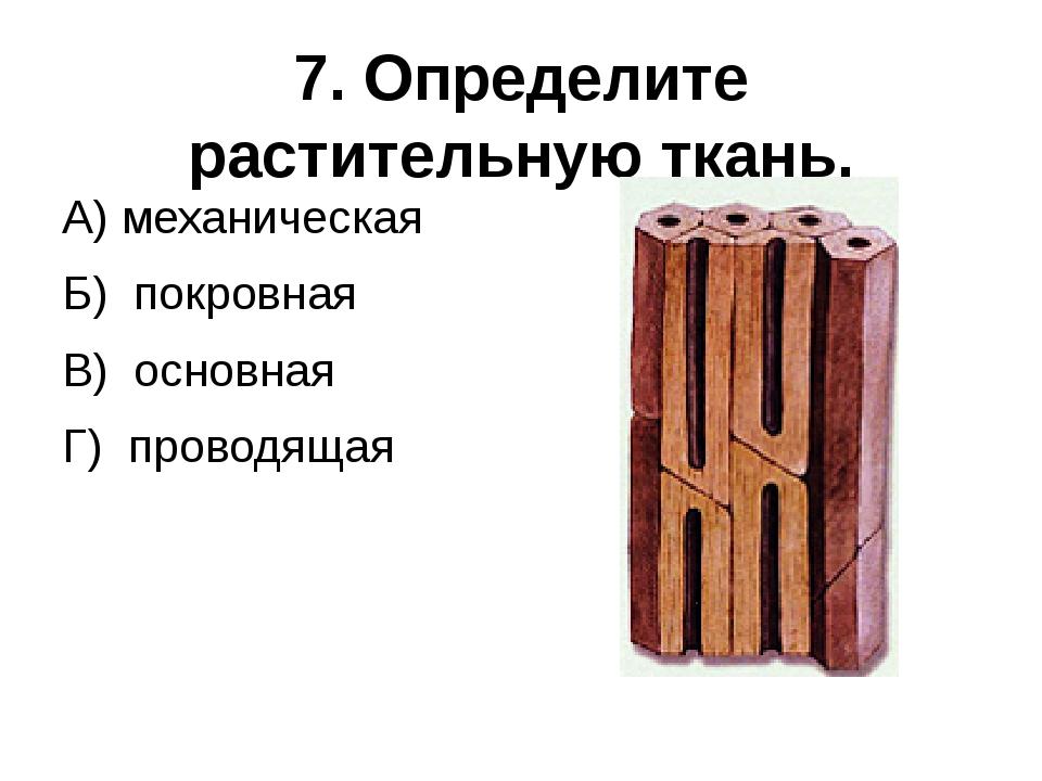 7. Определите растительную ткань. А) механическая Б) покровная В) основная Г)...