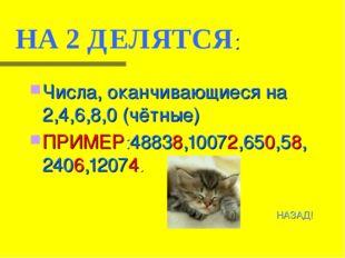 НА 2 ДЕЛЯТСЯ: Числа, оканчивающиеся на 2,4,6,8,0 (чётные) ПРИМЕР:48838,10072,