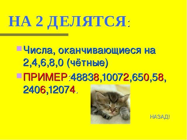 НА 2 ДЕЛЯТСЯ: Числа, оканчивающиеся на 2,4,6,8,0 (чётные) ПРИМЕР:48838,10072,...