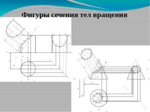 Фигуры сечения тел вращения
