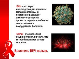ВИЧ – это вирус иммунодефицита человека. Попав в организм, он постепенно раз