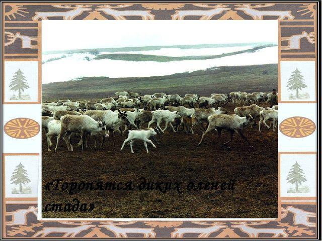 «Торопятся диких оленей стада»