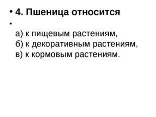 4. Пшеница относится а) к пищевым растениям, б) к декоративным растениям, в)