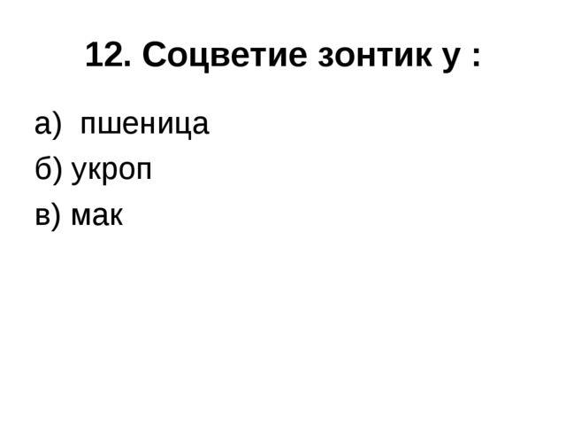 12. Соцветие зонтик у : а) пшеница б) укроп в) мак