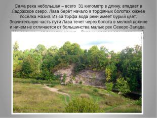 Сама река небольшая – всего 31 километр в длину, впадает в Ладожское озеро. Л