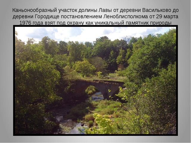 Каньонообразный участок долины Лавы от деревни Васильково до деревни Городище...