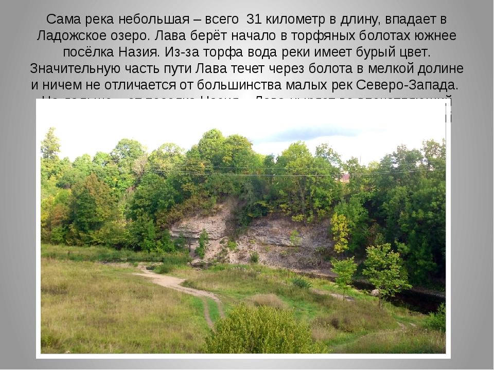 Сама река небольшая – всего 31 километр в длину, впадает в Ладожское озеро. Л...