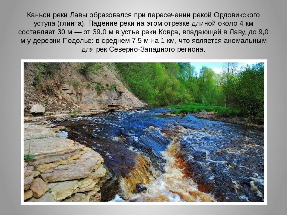 Каньон реки Лавы образовался при пересечении рекой Ордовикского уступа (глинт...