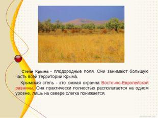 Степи Крыма– плодородные поля. Они занимают большую часть всей территории К