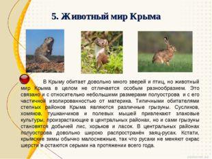 5. Животный мир Крыма В Крыму обитает довольно много зверей и птиц, но животн