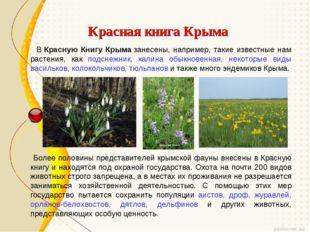 Красная книга Крыма ВКрасную Книгу Крымазанесены, например, такие известны