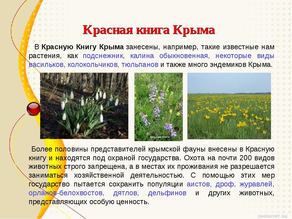 Красная книга Крыма ВКрасную Книгу Крымазанесены, например, такие известны...