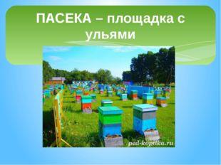 ПАСЕКА – площадка с ульями