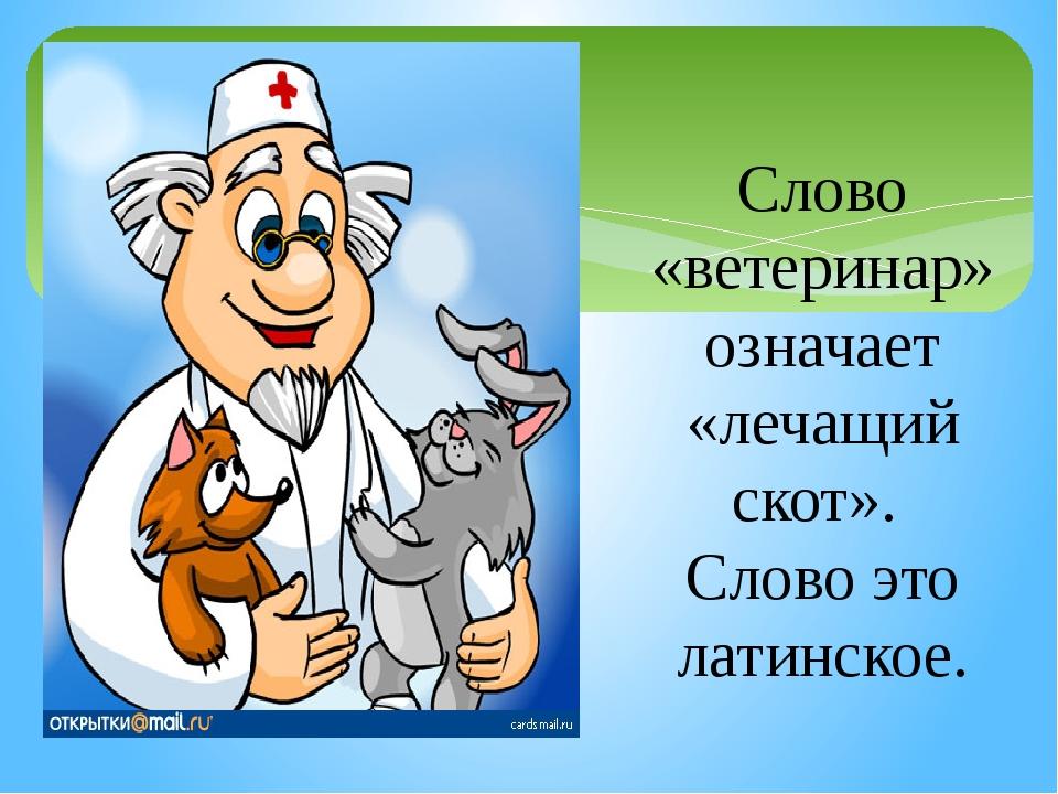 Слово «ветеринар» означает «лечащий скот». Слово это латинское.