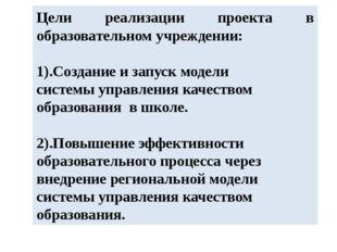 Цели реализации проекта в образовательном учреждении: 1).Создание и запуск мо
