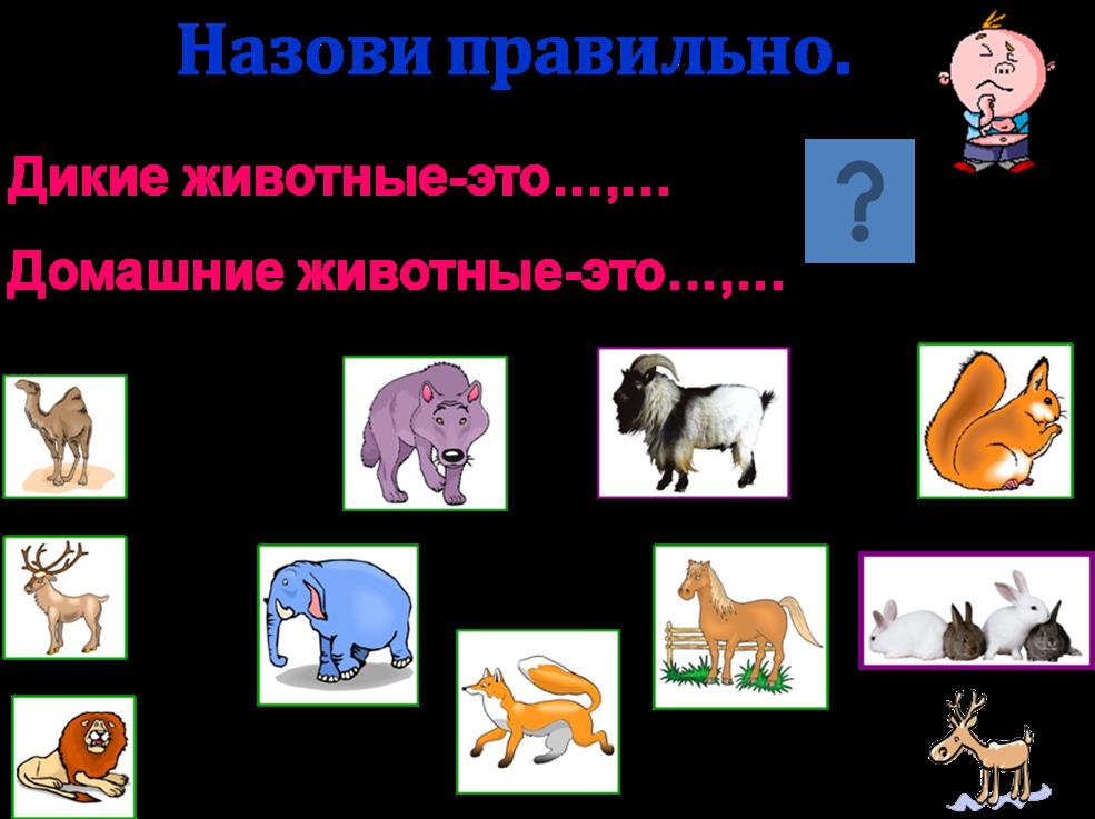 hello_html_7e0ea84a.png