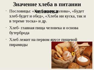 Значение хлеба в питании человека Пословицы: «Хлеб-всему голова», «Будет хлеб