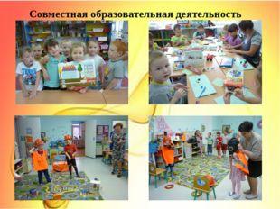 Совместная образовательная деятельность