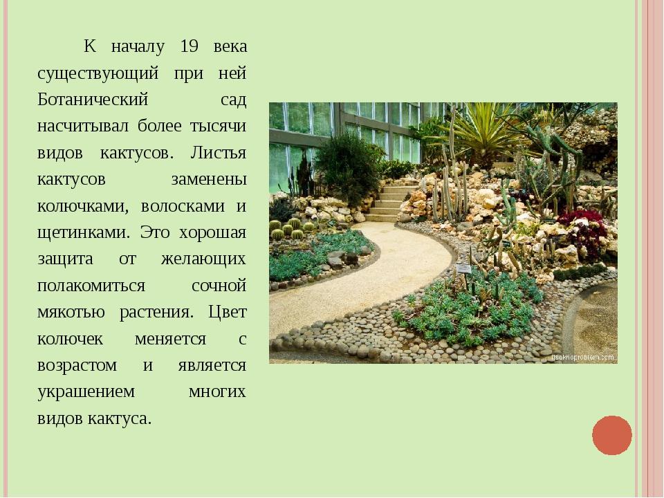 К началу 19 века существующий при ней Ботанический сад насчитывал более тыся...