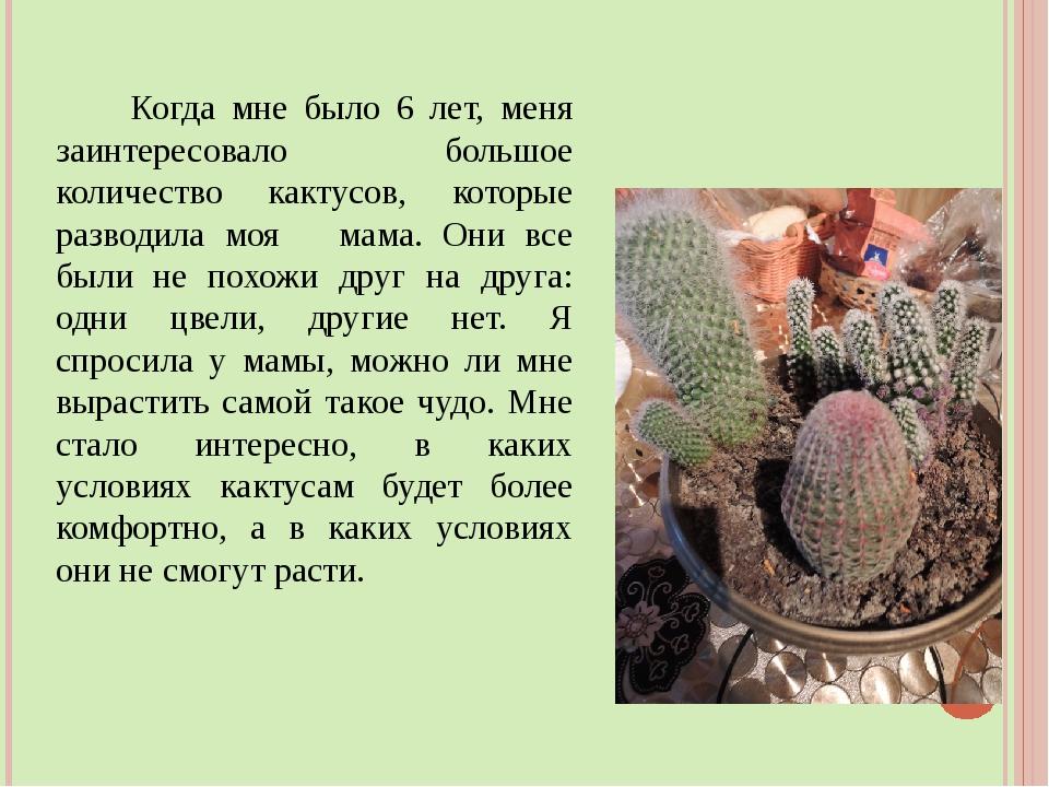 Когда мне было 6 лет, меня заинтересовало большое количество кактусов, котор...
