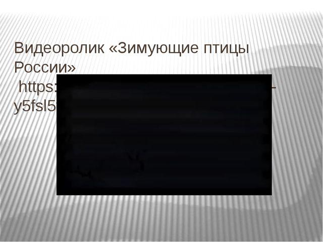 Видеоролик «Зимующие птицы России» https://www.youtube.com/watch?v=-y5fsl5trb8