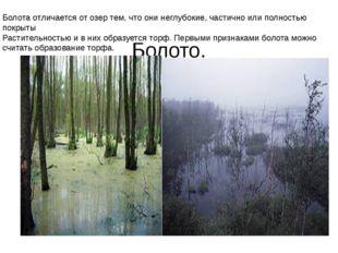 Болото. Болота отличается от озер тем, что они неглубокие, частично или полн