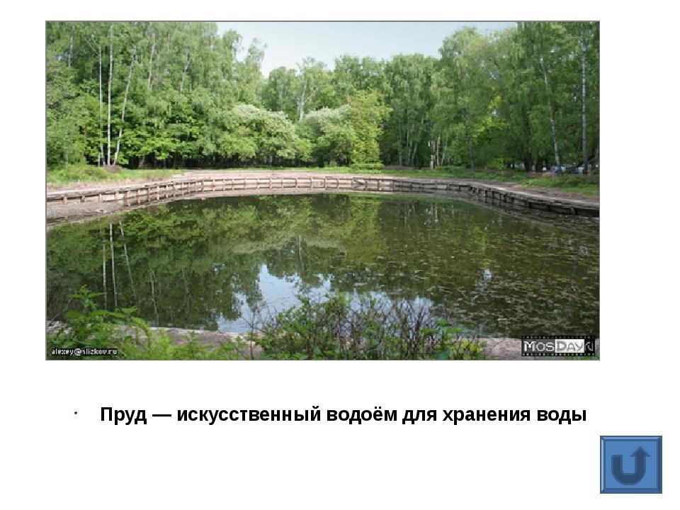 Пруд— искусственный водоём для хранения воды