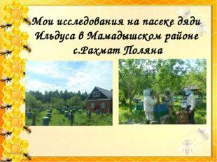 Мои исследования на пасеке дяди Ильдуса в Мамадышском районе с.Рахмат Поляна