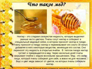 Что такое мед? Нектар – это сладкая сахаристая жидкость, которую выделяют раз