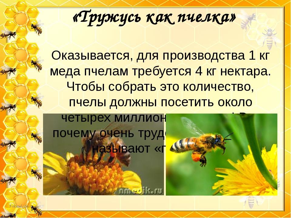 «Тружусь как пчелка» Оказывается, для производства 1 кг меда пчелам требуется...