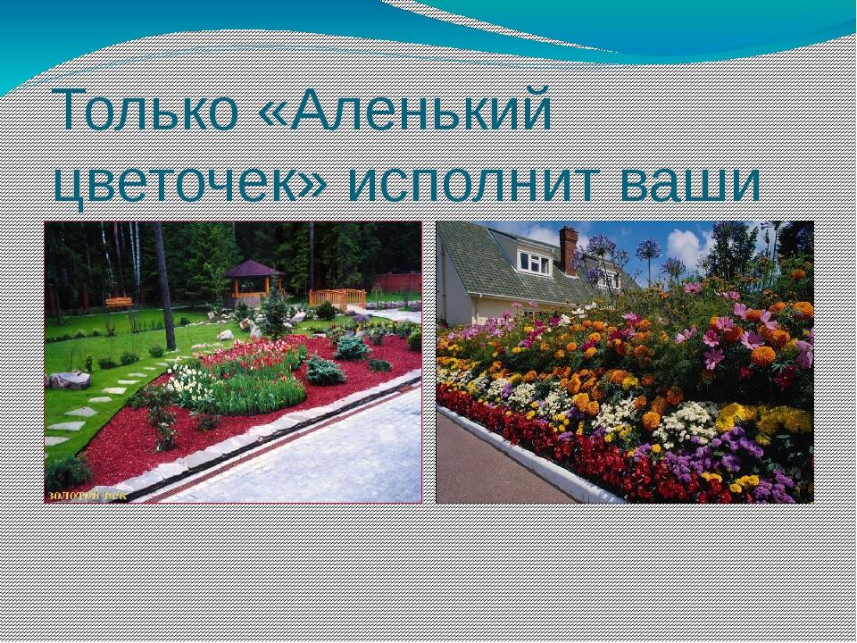 Только «Аленький цветочек» исполнит ваши желания!