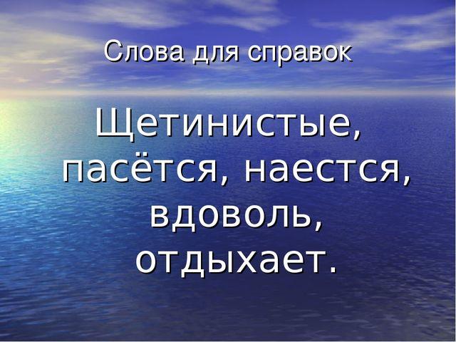 Слова для справок Щетинистые, пасётся, наестся, вдоволь, отдыхает.