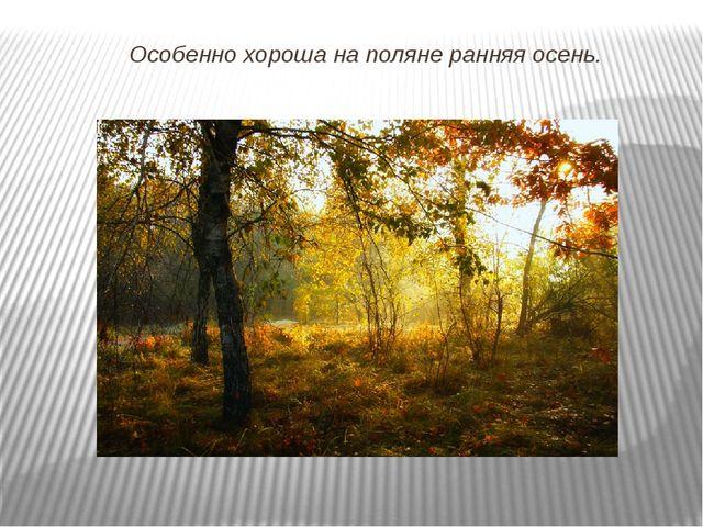 Особенно хороша на поляне ранняя осень.