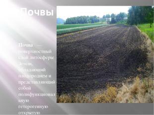Почвы Почва — поверхностный слой литосферы Земли, обладающий плодородием и пр