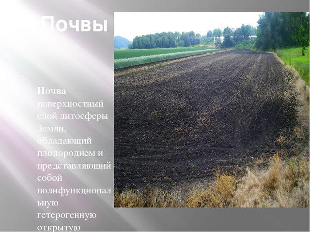 Почвы Почва — поверхностный слой литосферы Земли, обладающий плодородием и пр...