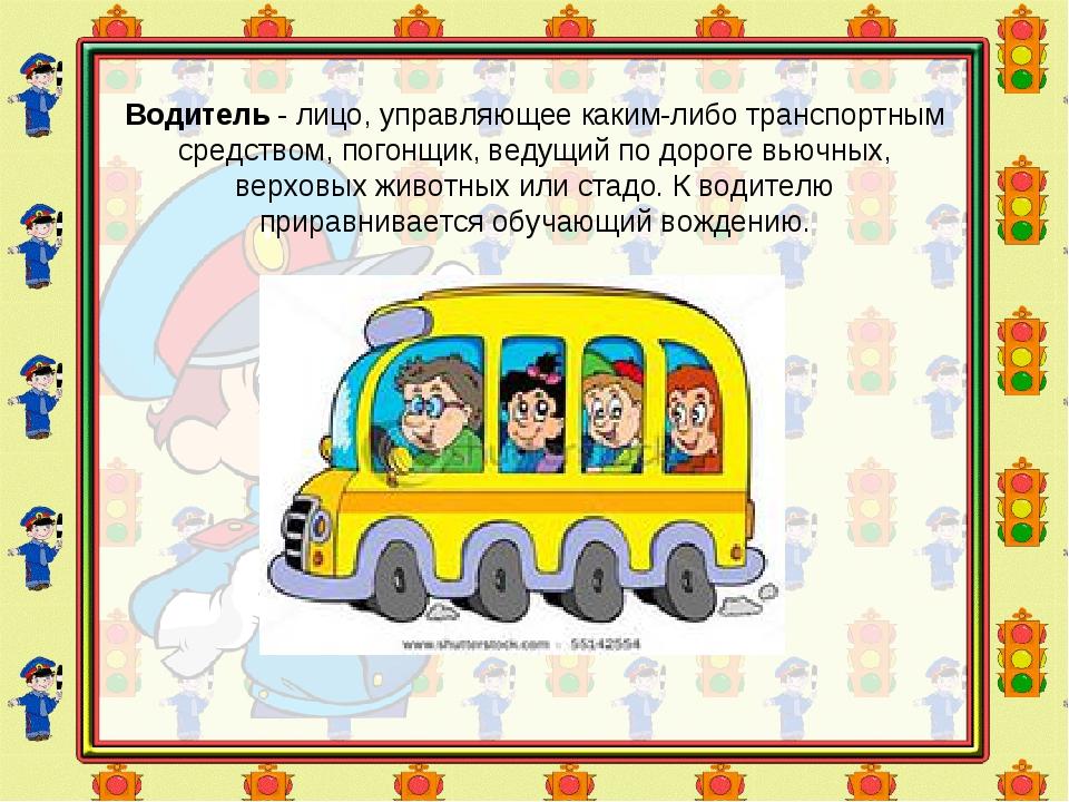 Водитель- лицо, управляющее каким-либо транспортным средством, погонщик, вед...