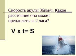 Скорость акулы 36км/ч. Какое расстояние она может преодолеть за 2 часа? V x t
