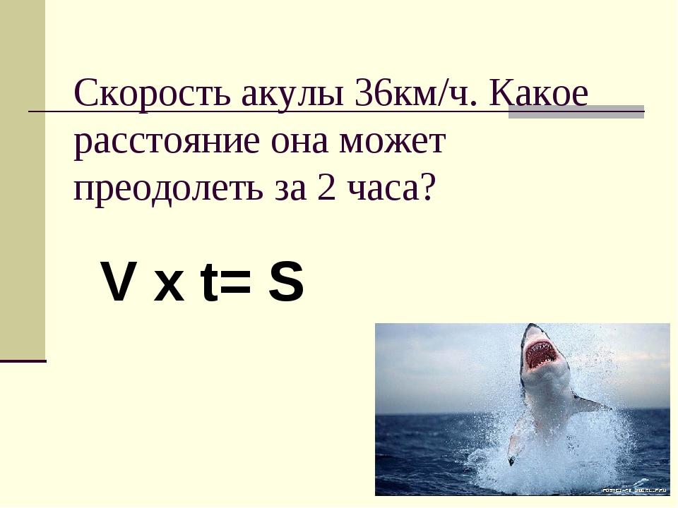 Скорость акулы 36км/ч. Какое расстояние она может преодолеть за 2 часа? V x t...