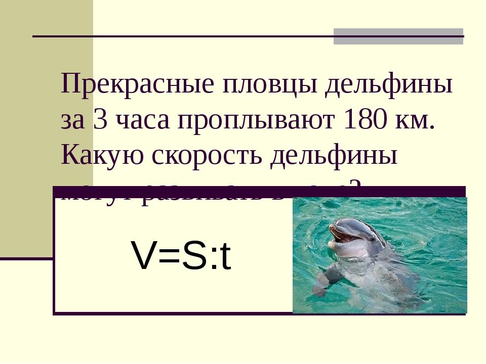 Прекрасные пловцы дельфины за 3 часа проплывают 180 км. Какую скорость дельфи...