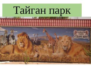 Тайган парк