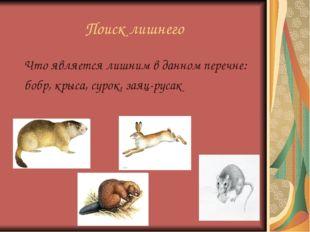 Поиск лишнего Что является лишним в данном перечне: бобр, крыса, сурок, заяц-