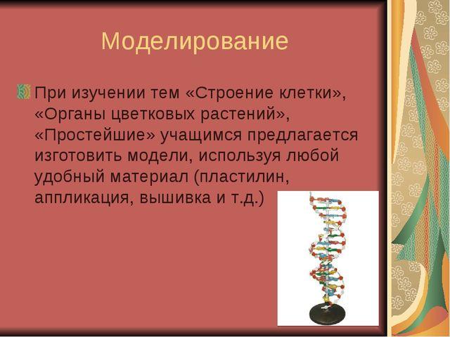 Моделирование При изучении тем «Строение клетки», «Органы цветковых растений»...