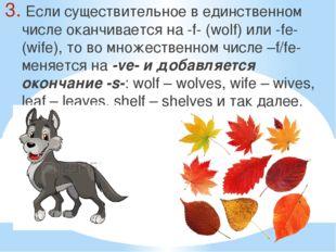 Если существительное в единственном числе оканчивается на -f- (wolf) или -fe