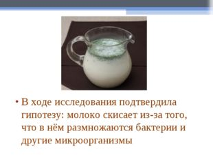 В ходе исследования подтвердила гипотезу:молоко скисает из-за того, что в нё