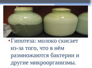Гипотеза:молоко скисает из-за того, что в нём размножаются бактерии и другие