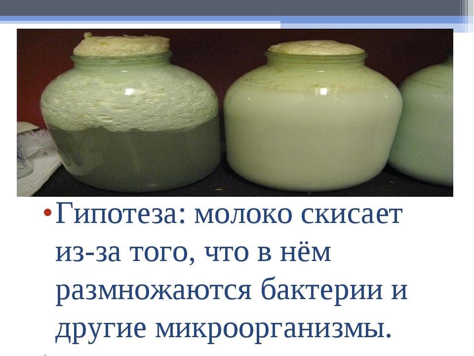 Гипотеза:молоко скисает из-за того, что в нём размножаются бактерии и другие...