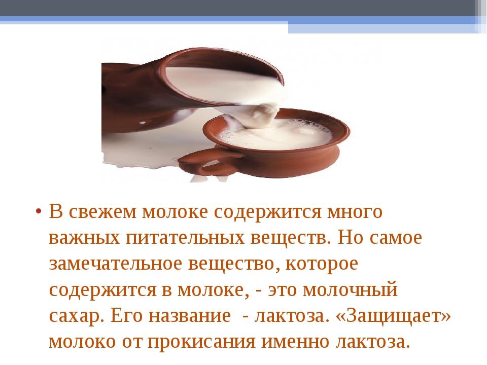 В свежем молоке содержится много важных питательных веществ. Но самое замечат...